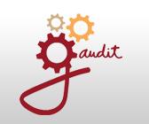 Gaudit este primul soft din România dezvoltat complet pentru managementul misiunilor de audit financiar